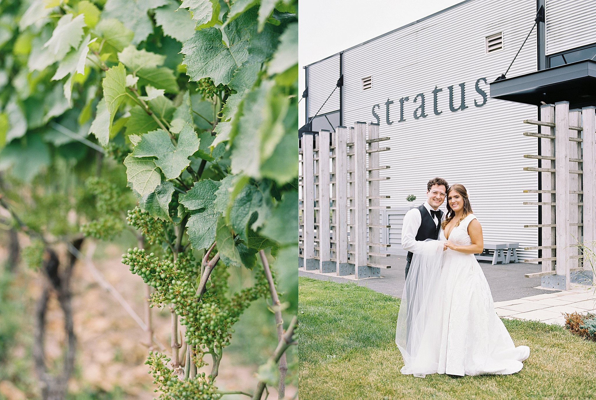 Stratus Winery, Fine art photographer, Durham Region Wedding Photography