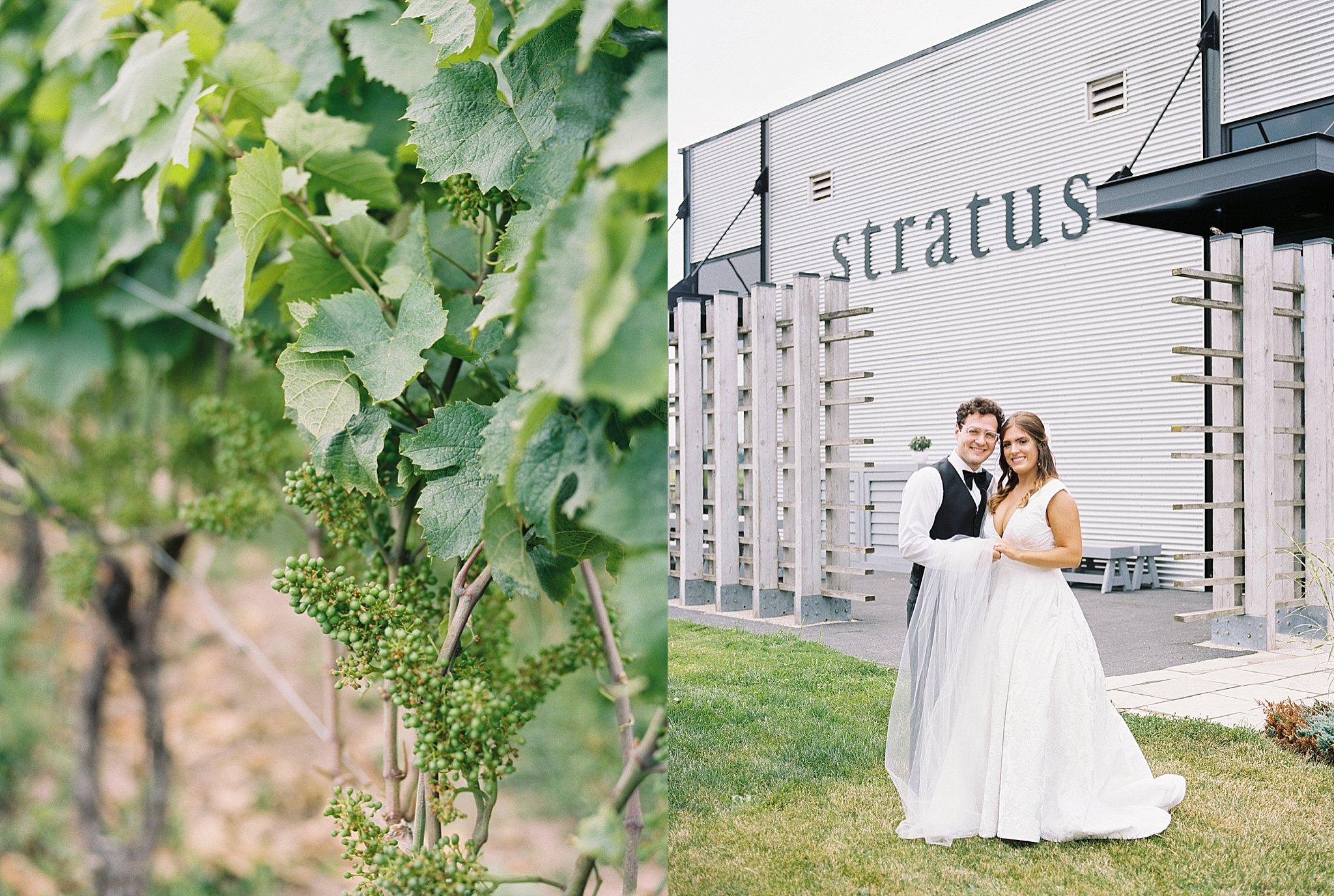 Stratus Winery, Fine art photographer, Durham Region Wedding Photography